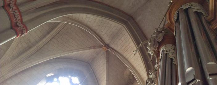 Pfarrkirche Orgelgewölbe